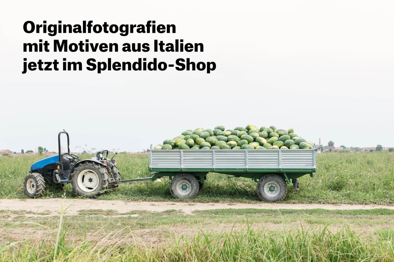 Splendido-Shop